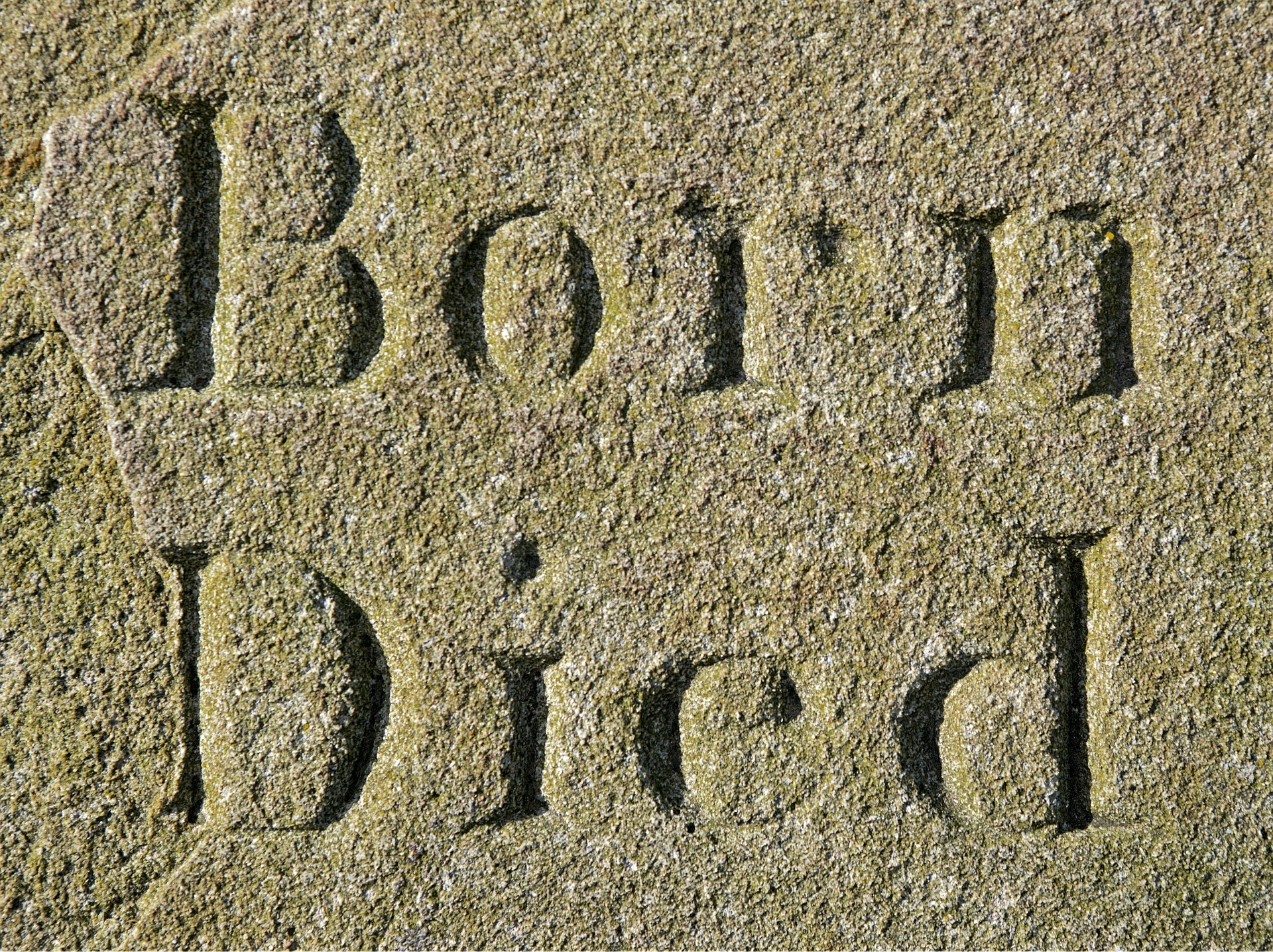 Born - Died Beitragsbild zu Martin Luther - Biographisches